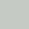 Light Grey RAL 7035